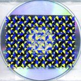 2003 : Pilé dans plate-bande cover